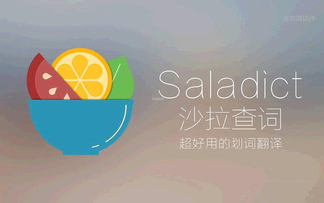 Saladict 沙拉查词_7.19.0_0