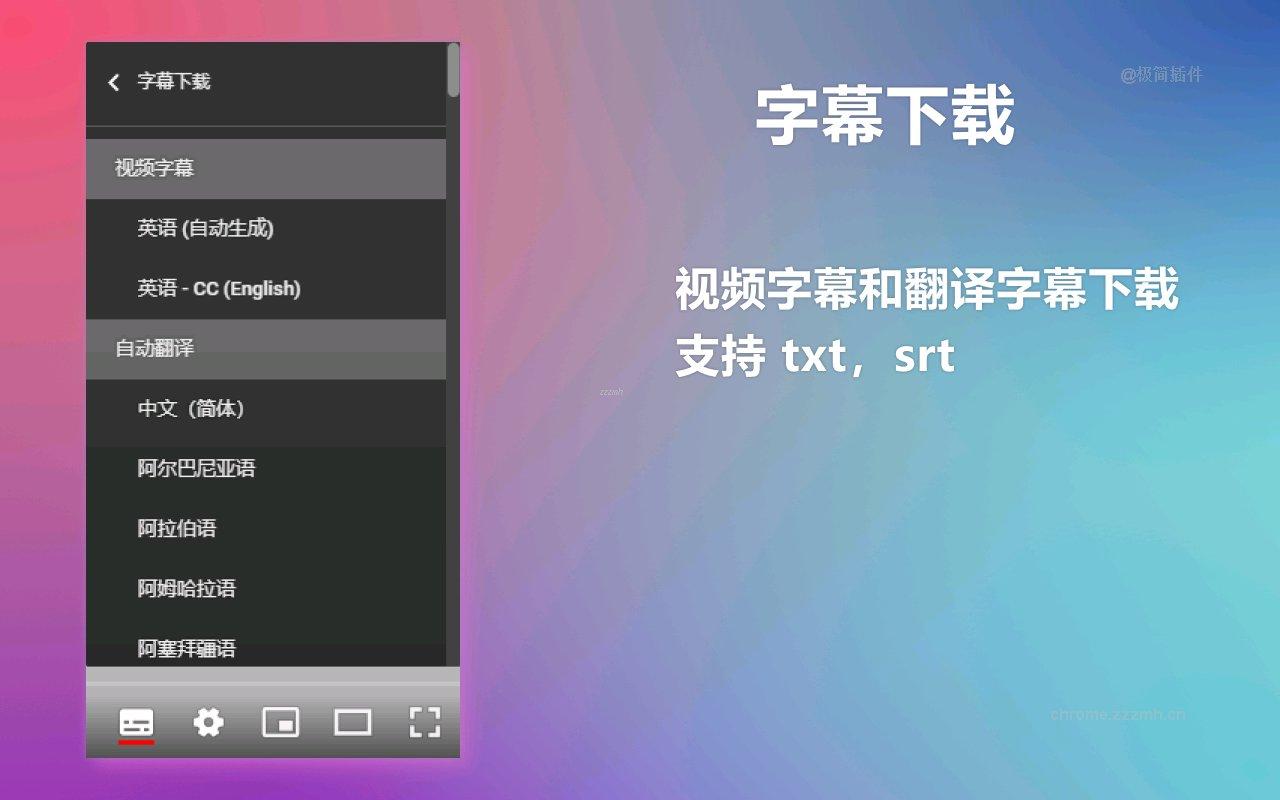 YouTube 双字幕_3.3.0_2