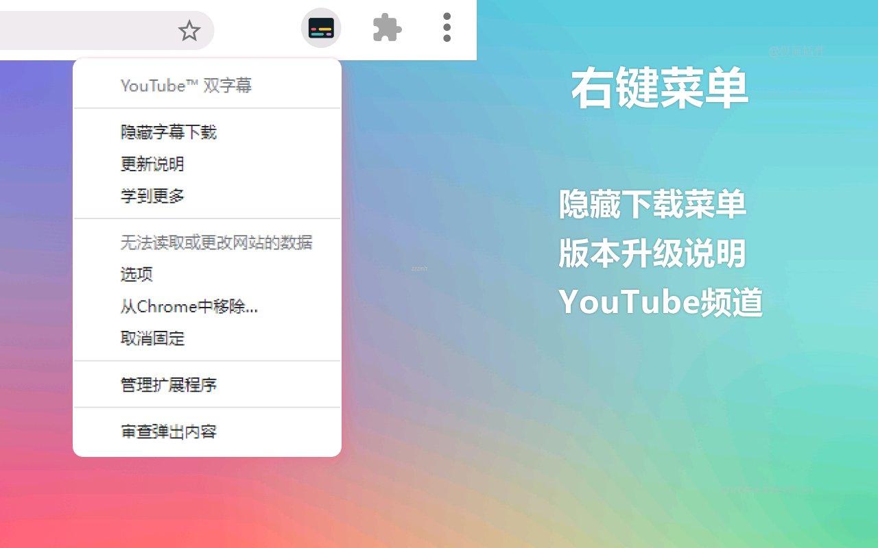 YouTube 双字幕_3.3.0_4